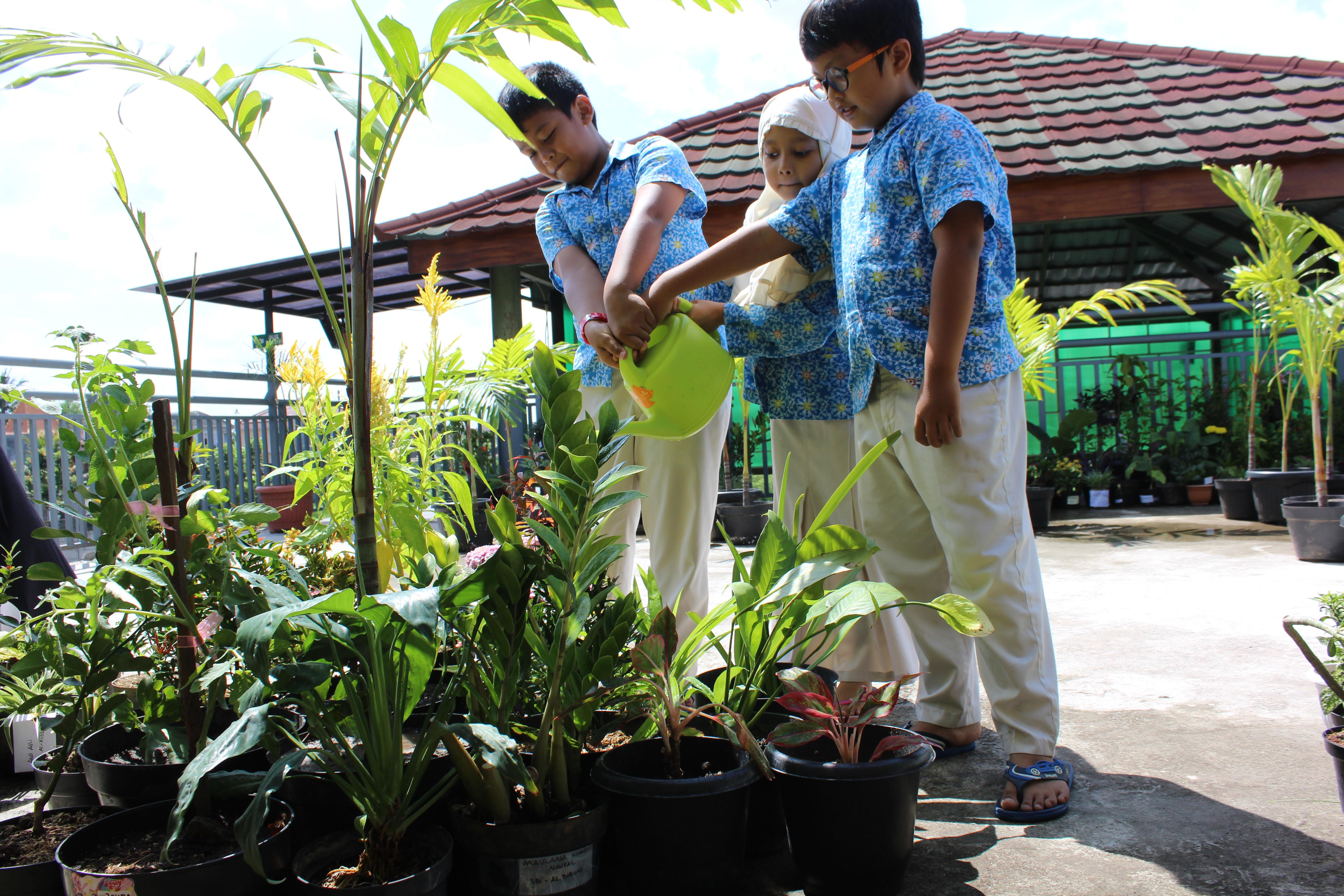Ajak Anak Anak Untuk Merawat Pohon Di Sekitarnya Sekolah Teladan Yogyakarta